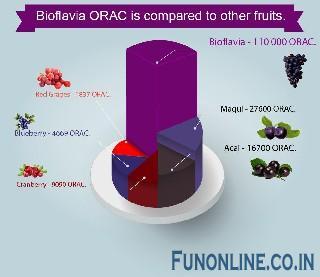 bioflavia co uk